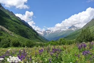 beautiful landscape Dombay valley Russia Greater Caucasus mountains North Caucasus