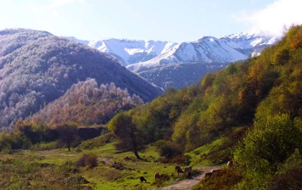 Caucasus mountains Vedensky Dargo village Chechnya landscapes