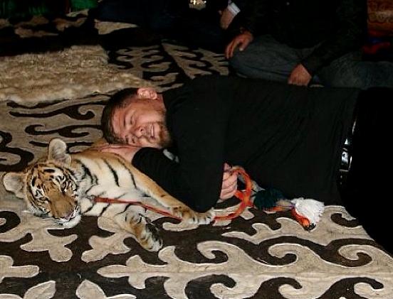chechen leader Ramzan Kadyrov tiger Grozny Chechnya North Caucasus Russia