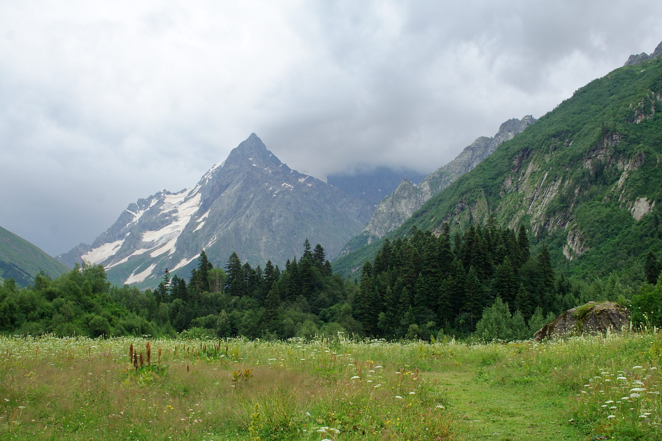where are the caucasus mountains
