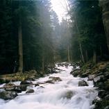 Murudju river Dombay Great Caucasus mountains North Caucasus