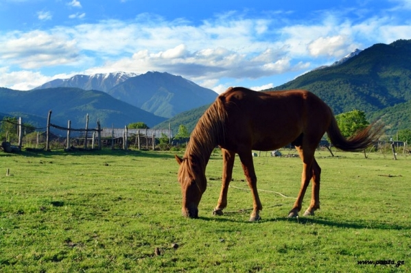 Pankisi gorge valley Georgia North Caucasus mountains