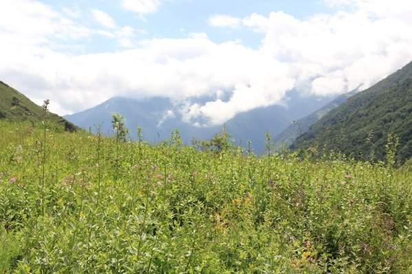 Ikalchu Chechnya Caucasus mountains landscape